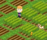 Farming For Fun